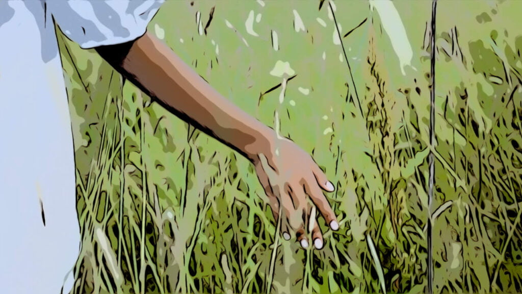 Vihreät niityt